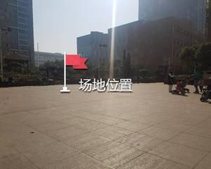 中海·琴臺华府