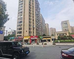 杭州东新府
