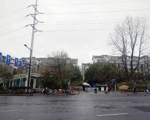 南京东郊美树苑