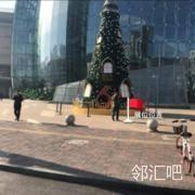 北区月季花外广场