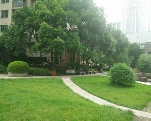 会所前方小广场