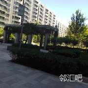 中央广场乒乓球台旁